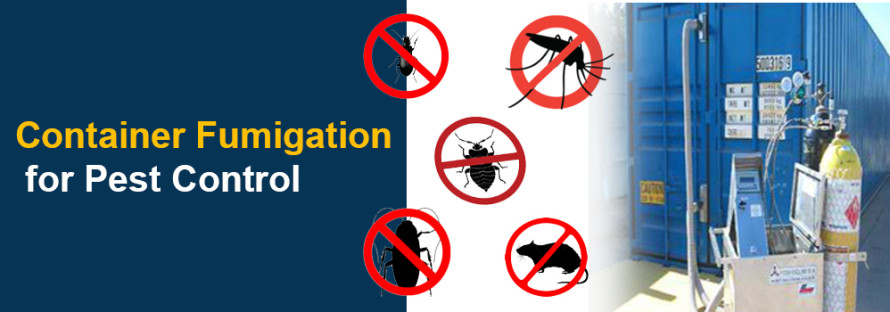 Container Fumigation for Pest Control