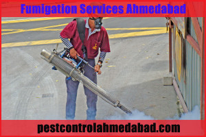 Fumigation Services supplier