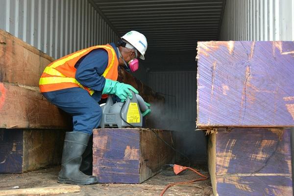 Container Fumigation Pest Control