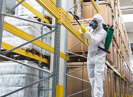 Fumigation in Food processing industry Gujarat